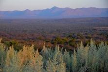 Otavi carbonates, Namibia